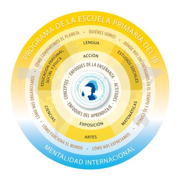 arji certificaciones primaria ib